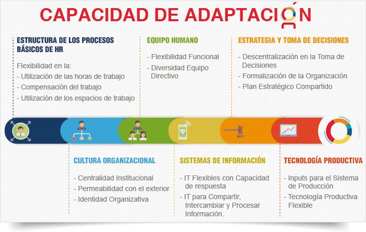 15 Factores Clave De La Capacidad De Adaptación Iic