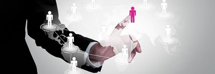 redes organizacionales,