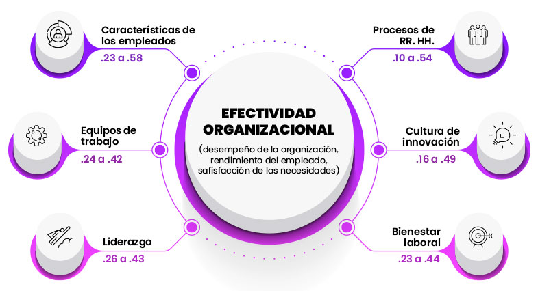 Efectividad Organizacional