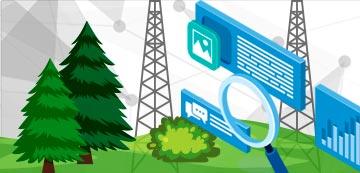 Optimización de la gestión forestal